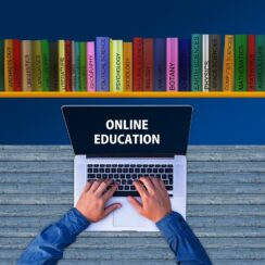 A Student's Guide To Online College: How Does It Work?